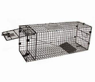 ANIMAL TRAP for hire in Sydney from Complete Hire