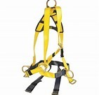 SAFETY HARNESS & LANYARD for hire in Sydney from Complete Hire